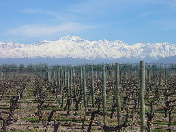 Mendoza es una provincia argentina situada en la Región de Cuyo